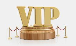 VIP服务